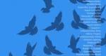 «Από Ψηλά»: Μια εικαστική περιπλάνηση στην Παλλήνη!