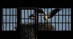 Καταναγκαστικό Cocooning . Η φυλακή το σπίτι μου ή Η non playlist της επικαιρότητας #55